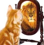 Gato con autoestima alta se ve león en el espejo